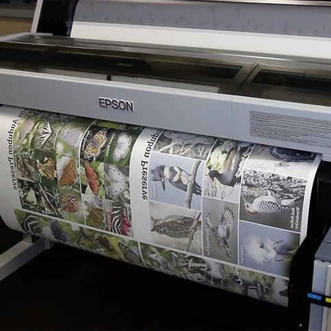 LexJet-InFuze-Dye-Sublimation-Paper-1